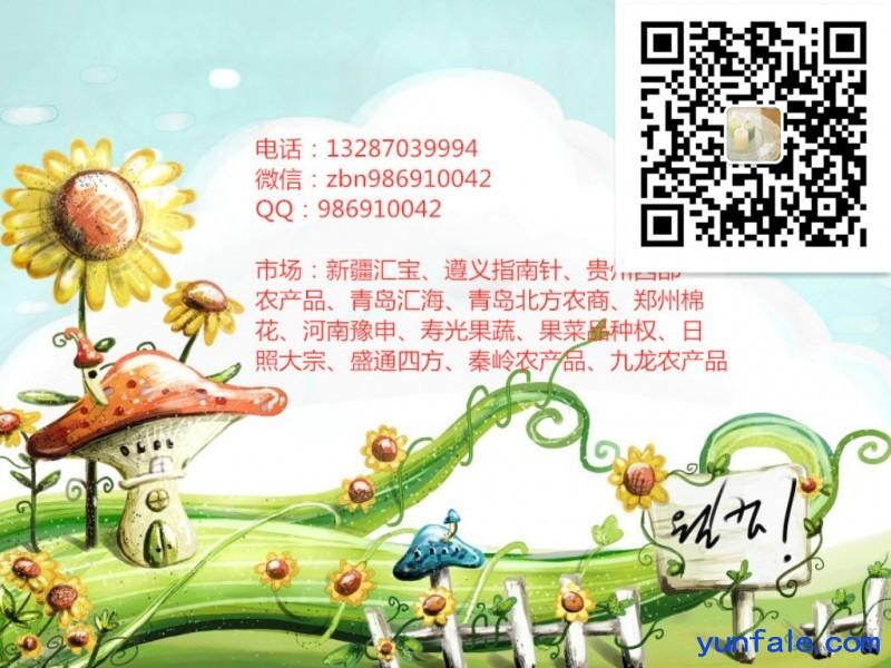 九龙农产品配资操作中心提供配资开户明细稳定盈利